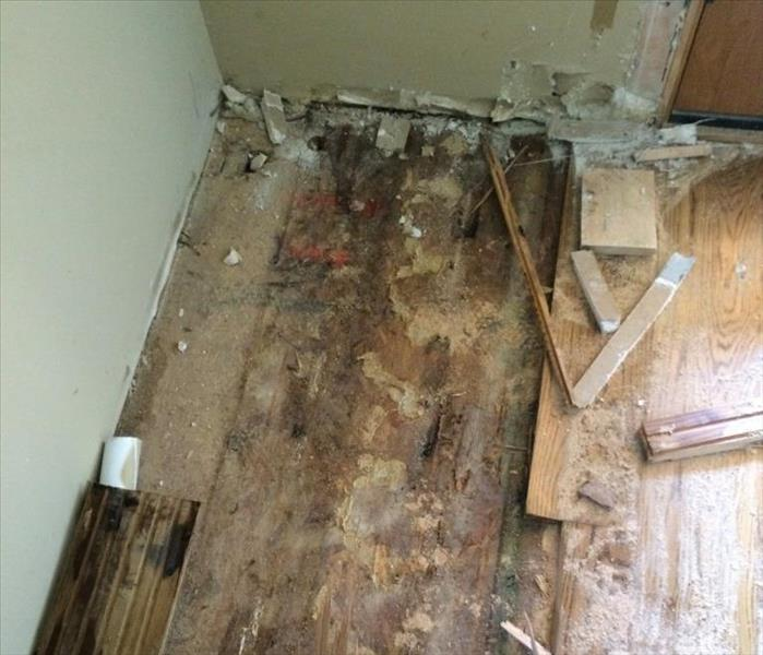Extensive Mold Damage In West Linn Home Before