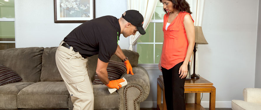 Lake Oswego, OR carpet upholstery cleaning