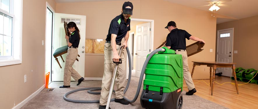 Lake Oswego, OR cleaning services